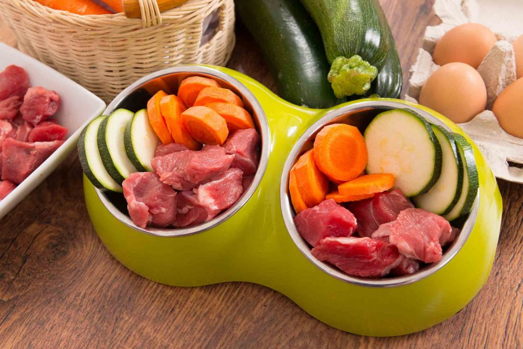 A healthy dinner for dogs