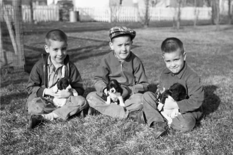 Three boys holding puppies (black and white)